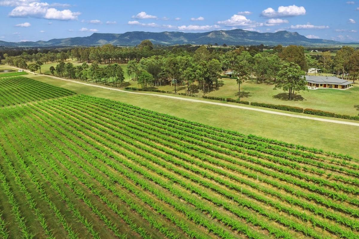 Hunter Valley Accommodation - Degen Estate - Pokolbin - all