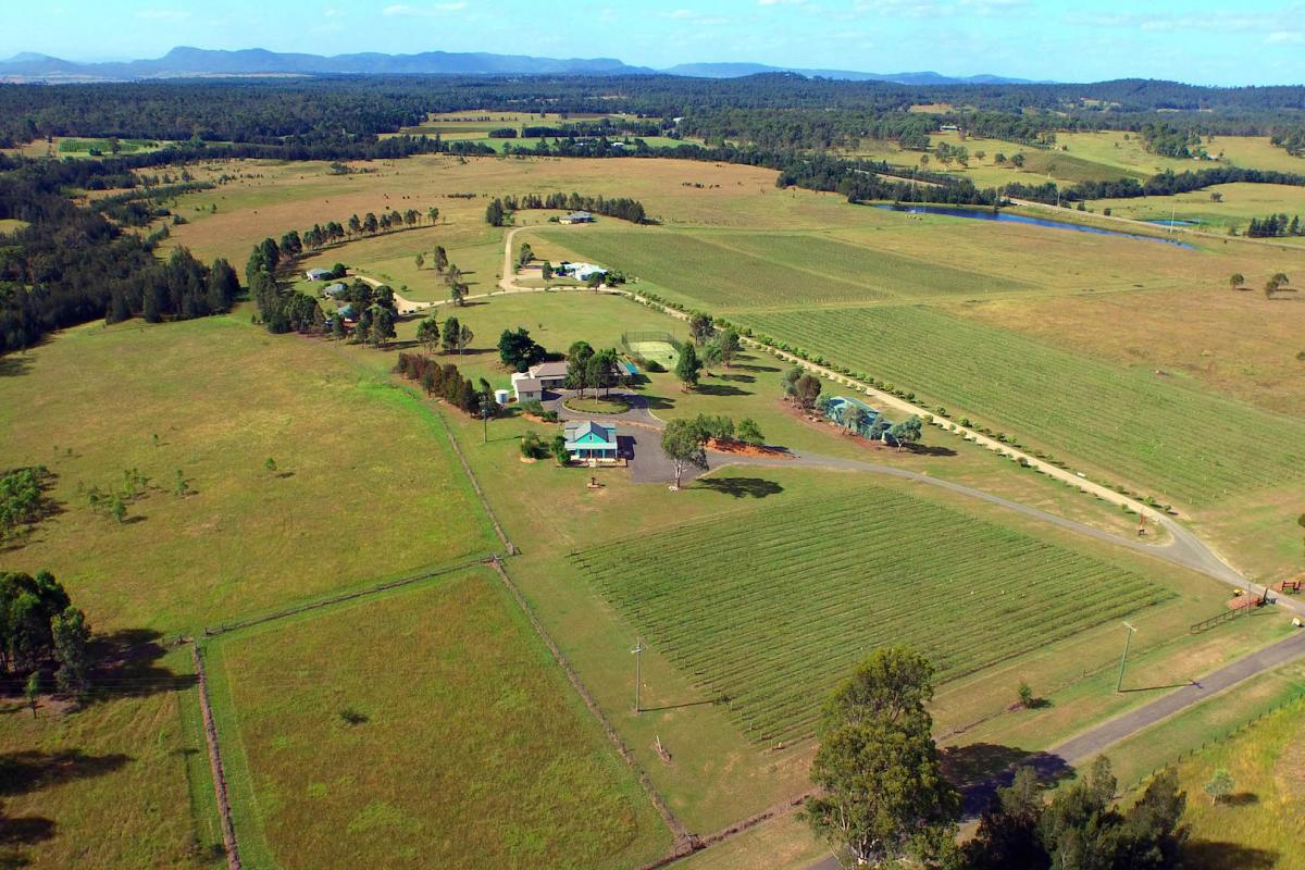Hunter Valley Accommodation - Windsors Edge Rothbury Cottage - Pokolbin - Exterior