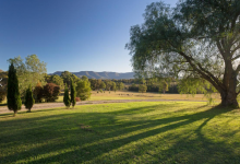 Hunter Valley Accommodation - Colette Cottage - Pokolbin - Exterior