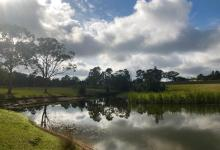Hunter Valley Accommodation - The Lake House - Bay Lovedale - all