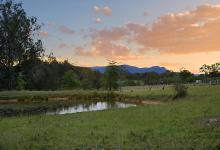 Hunter Valley Accommodation - Glengarrie Park - Pokolbin Hunter Valley - all