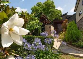 Eco Garden Retreat