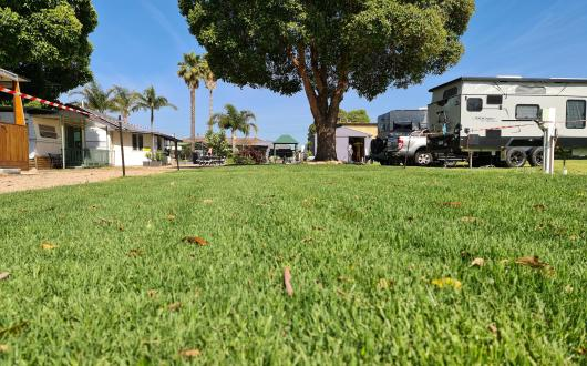 Powered Grass Site